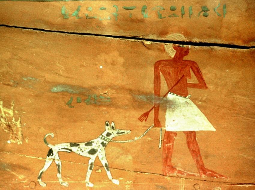 Народ Древнего Египта считал, что басенджи приносит счастье и удачу