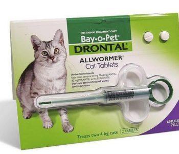 Некоторые упаковки «Дронтала» включают в себя приспособление для дачи кошке таблетки