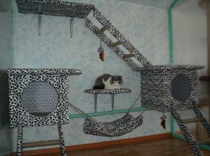 Ненадежные конструкции могут обрушиться и травмировать или сильно испугать кота