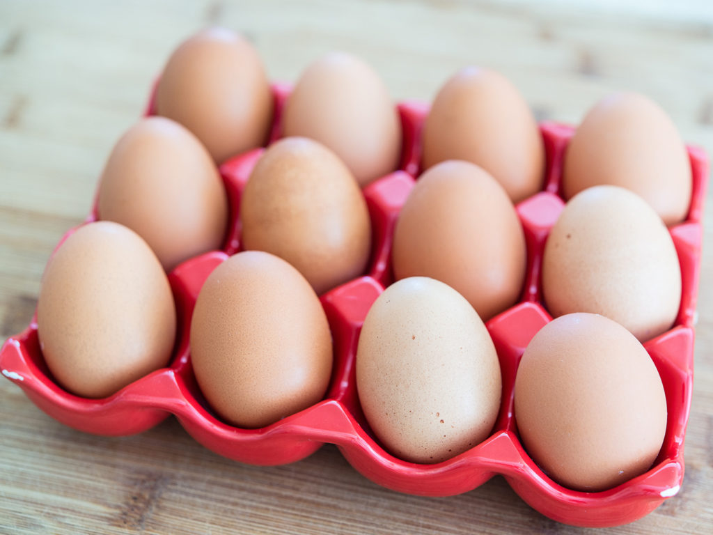 Обратите внимание на то, что сырые яйца не рекомендованы ни людям, ни животным