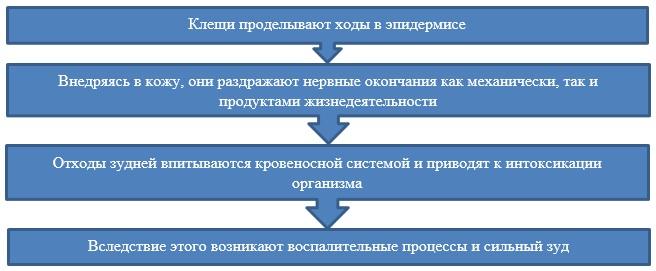 Особенности процесса