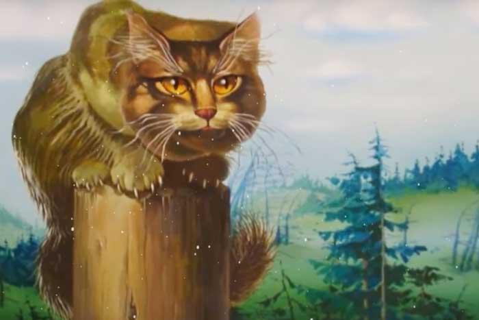 Популярный в русском фольклоре кот Баюн – трехцветного окраса