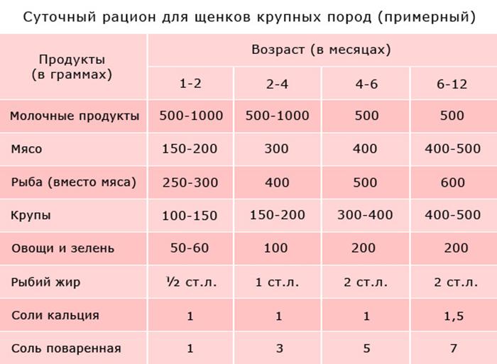 Примерная схема кормления щенка крупных пород
