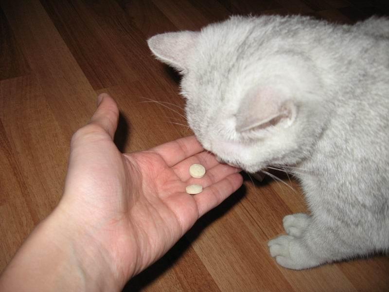 При недостатке кальция в организме, он назначается в качестве медикамента