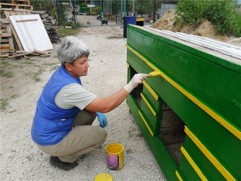 Пусть будка будет зелёно-жёлтой!
