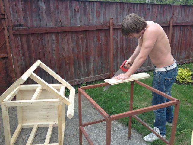 Самая лучшая будка для своего питомца - сделанная своими руками