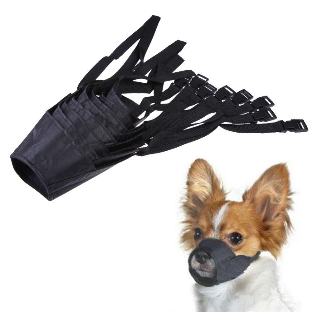 собака в конусообразном наморднике