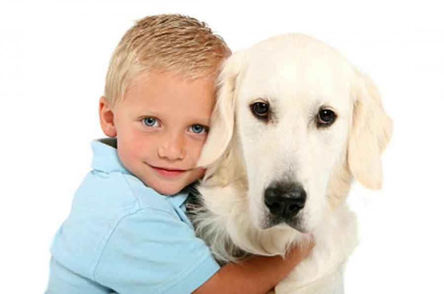 Какую собаку завести в частном доме с детьми