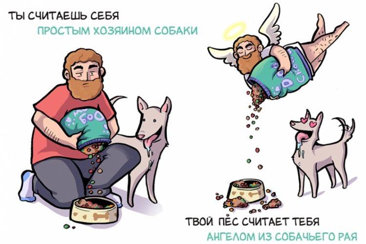 Собаки видят мир совершенно иначе, чем мы