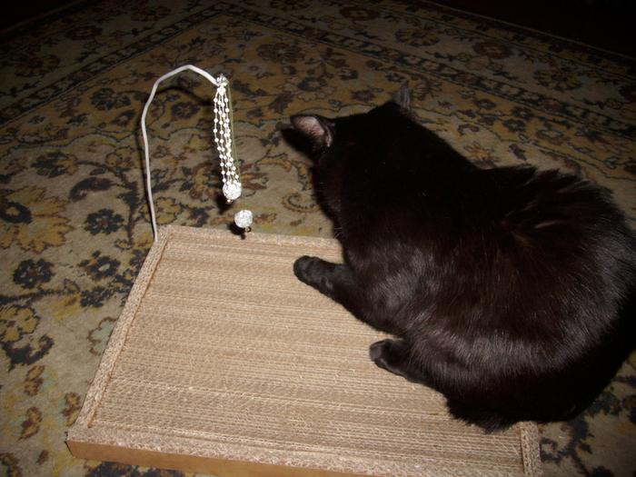 С плоской когтеточки удобно начинать знакомить кота с подобными приспособлениями