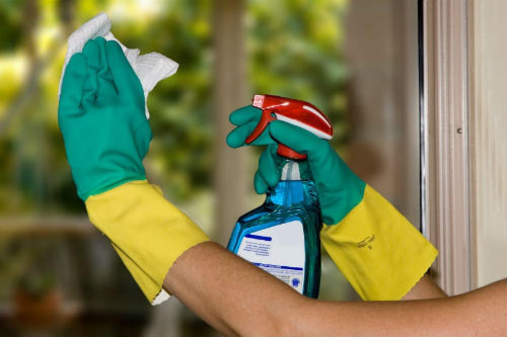 Чистота в доме значительно понизит риск проникновения в организм питомца инфекции