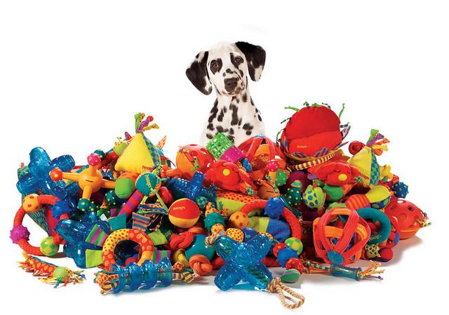 Чтобы животное не скучало рекомендуется приобрести в магазине для животных различные игрушки