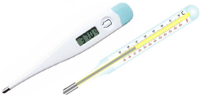 Чтобы узнать температуру у кошки, можно взять обычный или электронный градусник