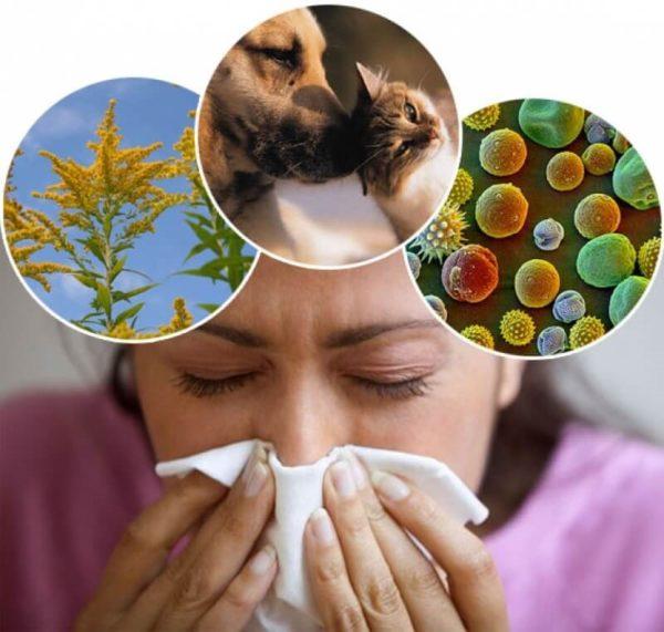 Человек может страдать аллергией на тысячи веществ