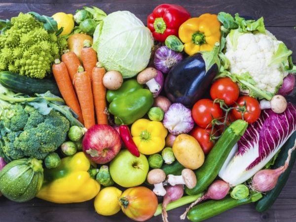 Если есть признаки переизбытка белка, нужно перевести собаку на овощное питание