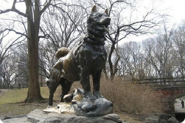 Памятник хаски Балто