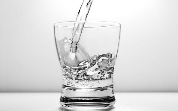 Употребление водки может негативно отразиться на здоровье питомца