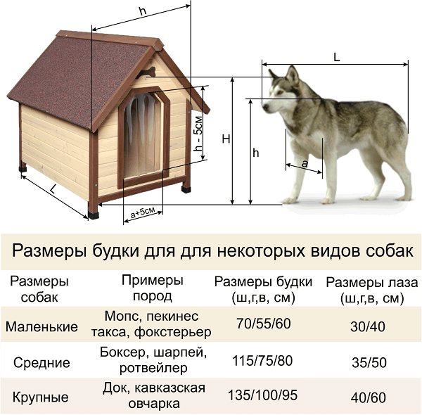 Как правильно рассчитывать размеры будок