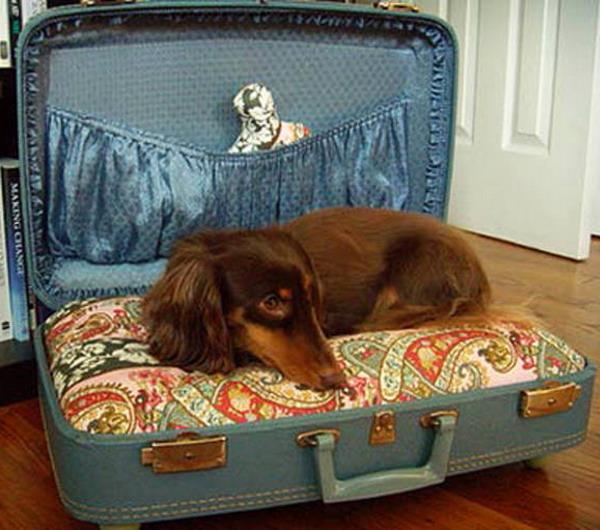 Будка-чемодан