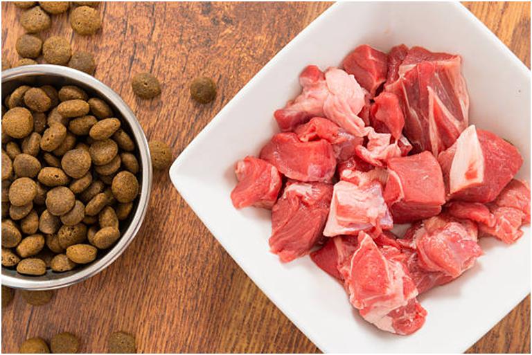 Выбирая кормление натуральными продуктами или промышленными кормами, учитывайте, что филам нужно сбалансированное питание, богатое белками, минералами и витаминами