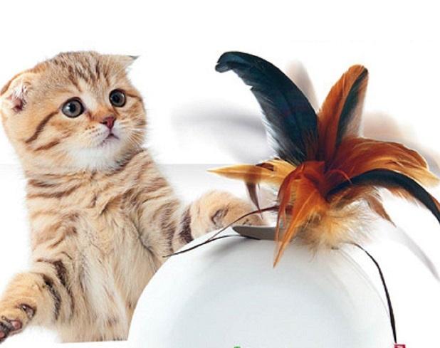 Игра с перьями
