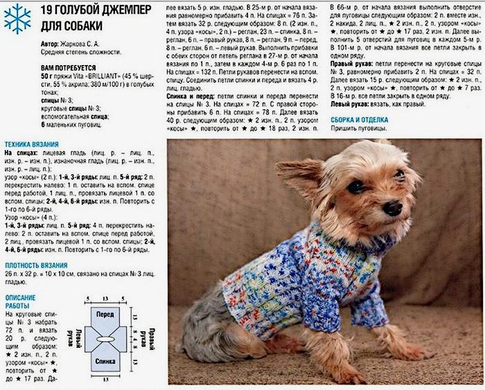 Идея вязаного свитера для собаки
