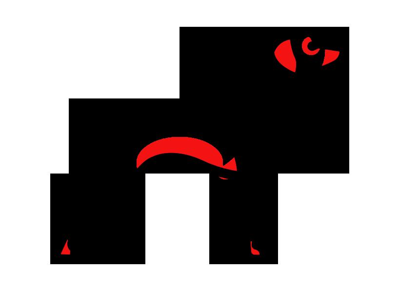 Красным цветом помечены места на теле собаки, поражаемые аллергической сыпью