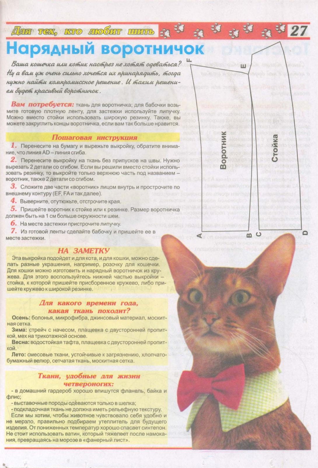 Нарядный воротничок для кота