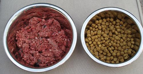 Натуральный и сухой корм