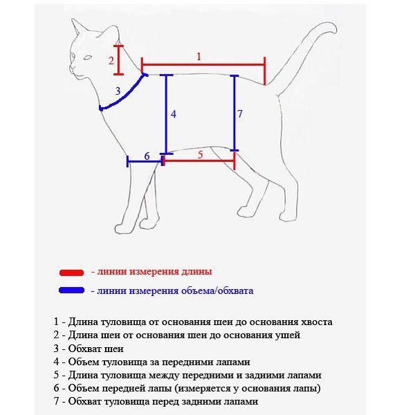 Основные замеры для пошива одежды коту