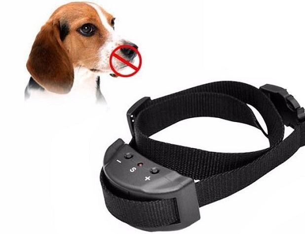 Ошейник-антилай поможет успокоить собаку