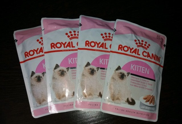Паштет Royal Canin для котят