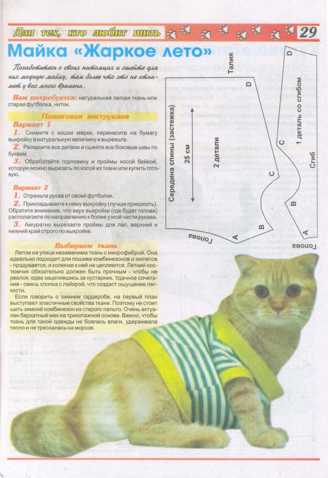Пошаговая инструкция по изготовлению майки для кота