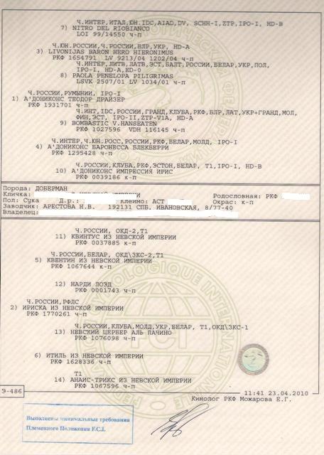 Регистровая родословная
