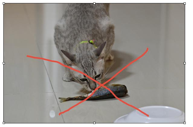 Для профилактики гельминтов у кошек нужно исключить из рациона сырую рыбу
