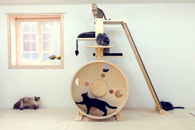 Современный игровой уголок для кошки