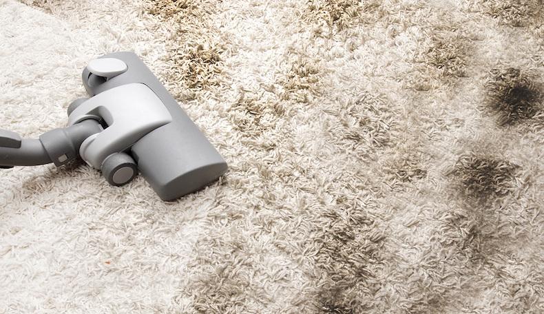 Чистке ковров и других ворсистых изделий необходимо уделить особое внимание