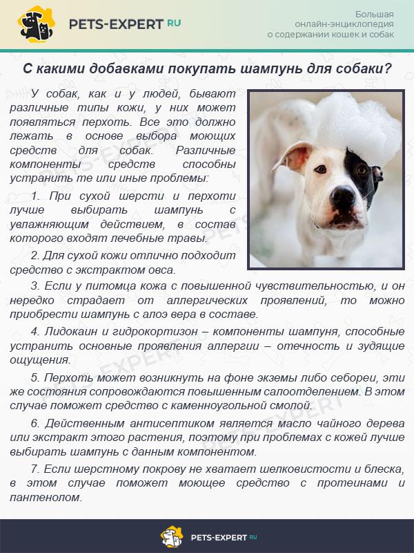 С какими добавками покупать шампунь для собаки?