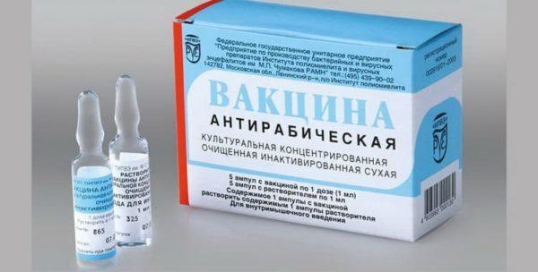 При выборе антирабической вакцины лучше посоветоваться с ветеринаром