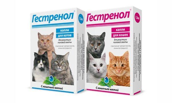 «Гестренол» для кошек и котов