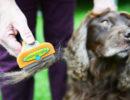Фурминатор для собак