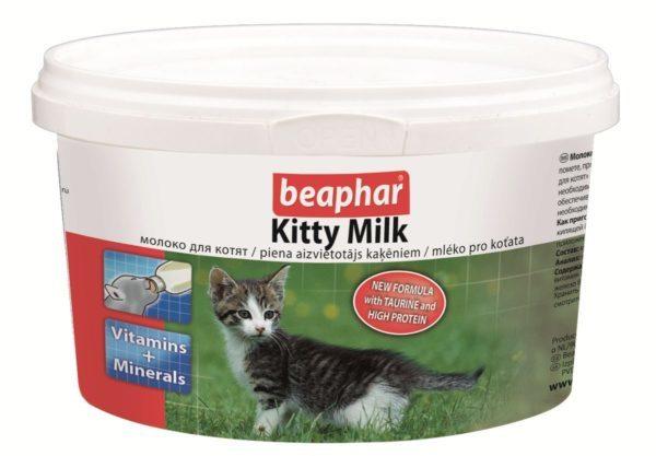 Beaphar Kitty-Milk — популярное средство для кормления котятBeaphar Kitty-Milk — популярное средство для кормления котят