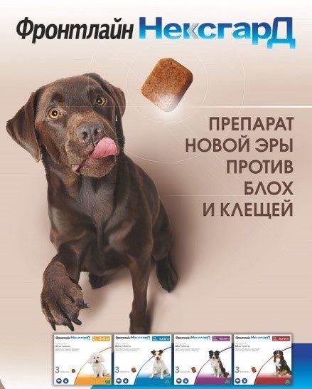 Искомое средство имеет особенность: оно выполнено в виде вкусности для собак