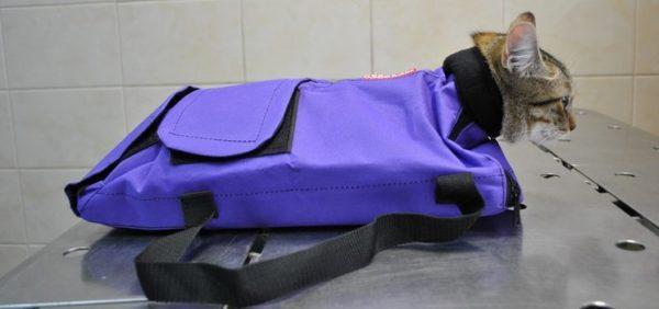 Чтобы надёжно удержать кошку, можно использовать сумку-фиксатор