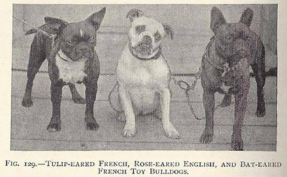 Фото из газеты начала ХХ века