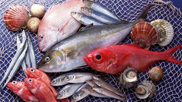 Излишек рыбы провоцирует развитие МКБ