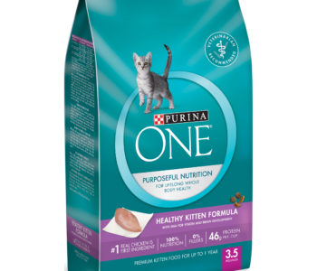 Purina One Healthy Kitten