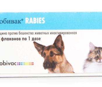 Упаковка вакцины