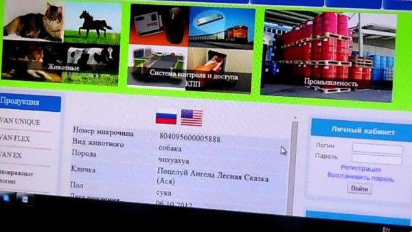 Многие российские базы данных объединены с международными