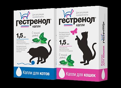 «Гестренол» считается безопасным для питомцев лекарственным средством